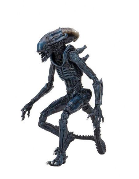 es::Alien vs Predator Pack 3 Figuras 20 cm